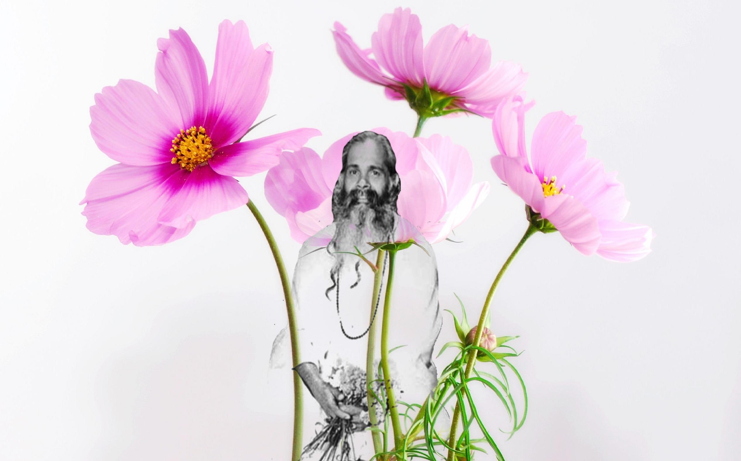 El Hatha Yoga y la Respiración Apropiada